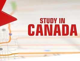 Study Permit